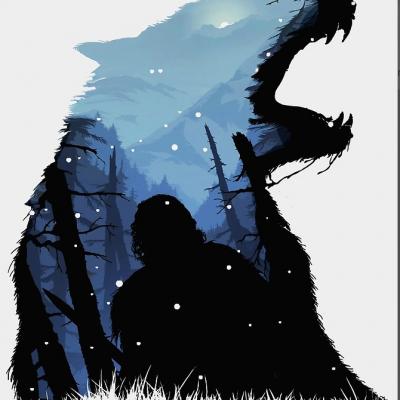 Jon Snow King of The North